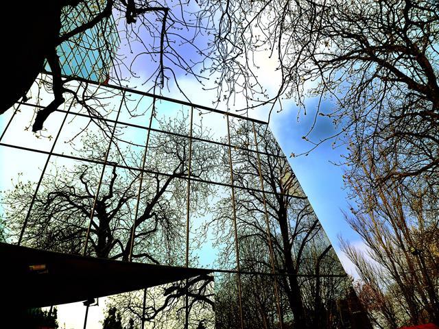 Protecfolien-Sonnenschutzfolien für Fenster spiegel silber-fensterfolie anbringen lassen